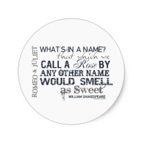 romeo_juliet_name_quote_stickers-rffa76c82b5df4d69acf0cf3374e1a148_v9waf_8byvr_512