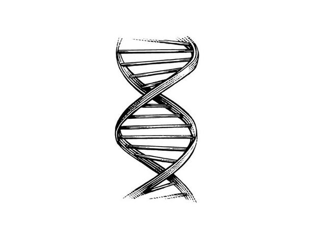 Where can I find Double Helix online?