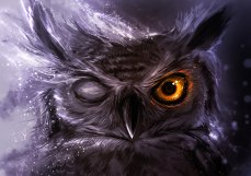 night_owl_by_delun-d4hxz5t