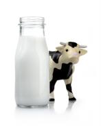 got-milk
