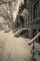 snowcage