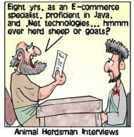 HerdsmanInterview
