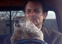 groundhog-day-not-free-to-use-or-share