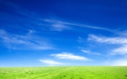 blue_sky_and_green_grass-wide