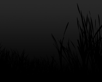 black-grass-wallpaper-1280x1024