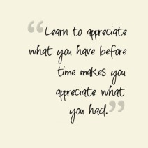 learn-to-appreciate-what-you-have-life-quotes-sayings-pictures