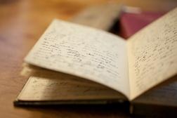 TFS-diaries-0021-2glgf8c
