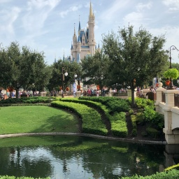 Orlando, Part III: Magic Kingdom